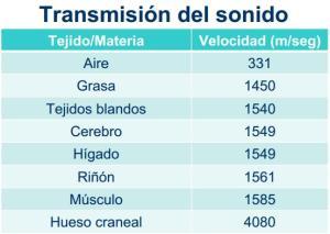 transmision_del_sonido_cuerpo_humano