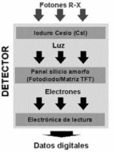 detector_silicio_amorfo